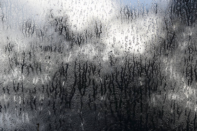 Wet window in autumn, tree and clouds in the background by Marcel for Stocksy United