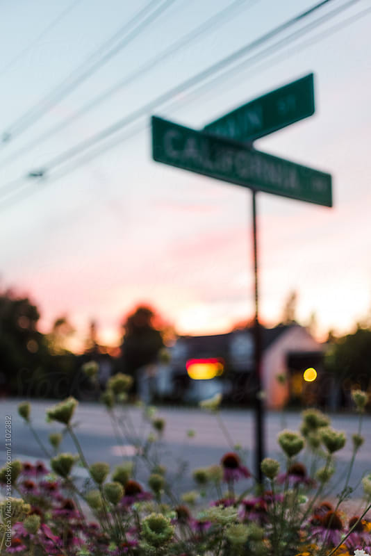 Flowers on a city street at sunset by Chelsea Victoria for Stocksy United