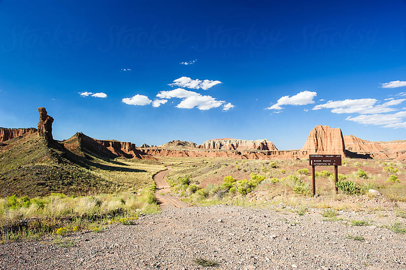 road in cathedral valley at capitol reef national park by Peter Wey for Stocksy United
