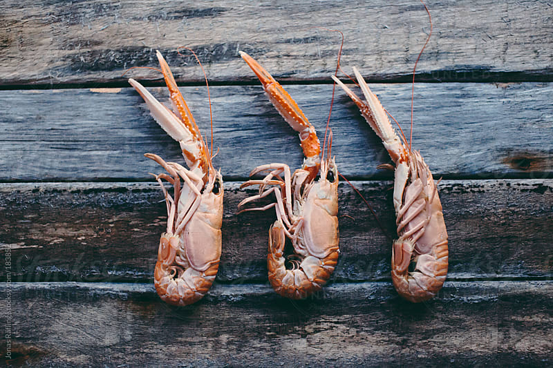 Nephrops on a wooden table by Jonas Räfling for Stocksy United
