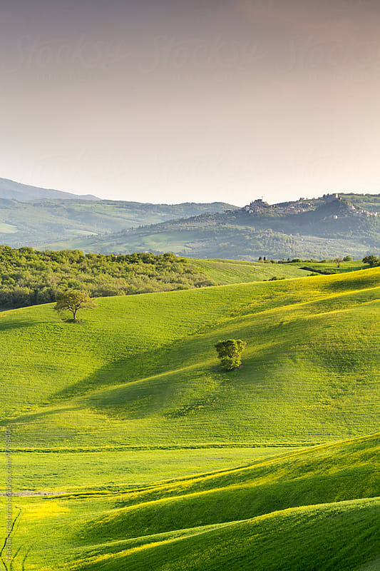 Tuscany landscape by Marilar Irastorza for Stocksy United