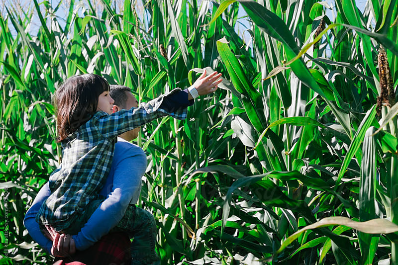 Dad holds son while he reaches for corn by kelli kim for Stocksy United