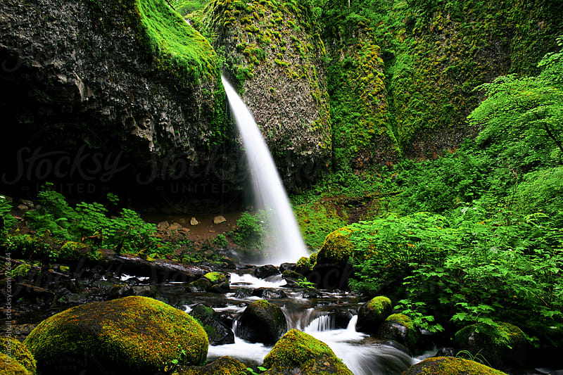 Ponytail Falls, Columbia River Gorge by Thomas Shull for Stocksy United