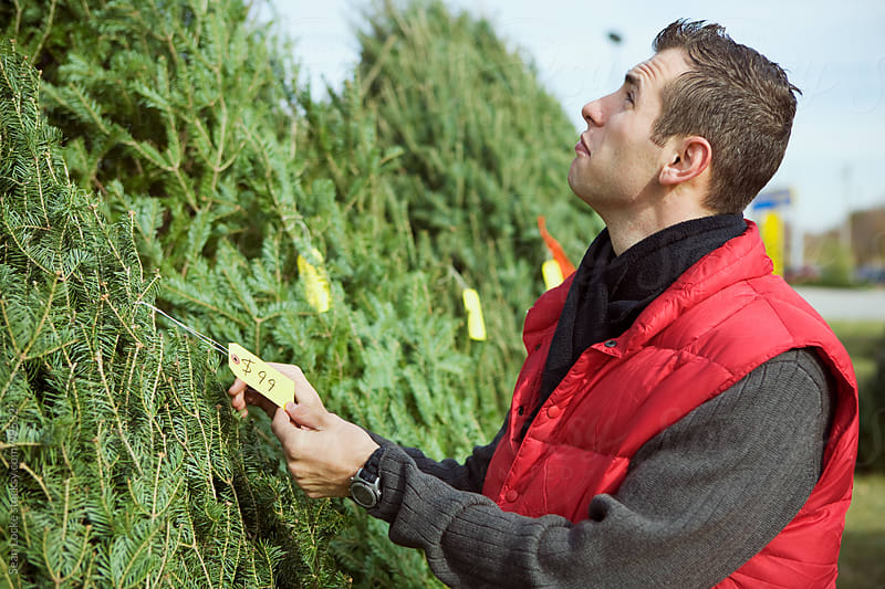 Tree Lot: Man Deciding If Tree Is Too Expensive by Sean Locke for Stocksy United