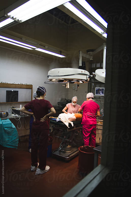Medical team getting ready for dog surgery by Leandro Crespi for Stocksy United