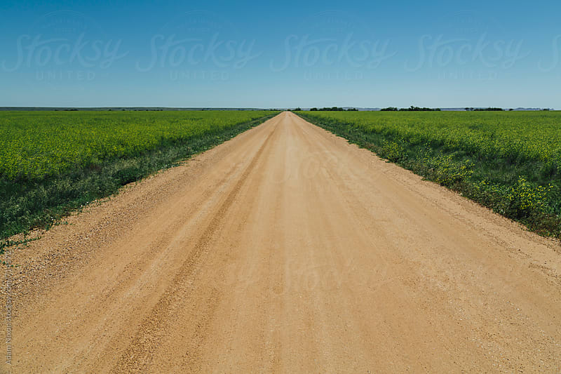 Long straight dirt road by Adam Nixon for Stocksy United