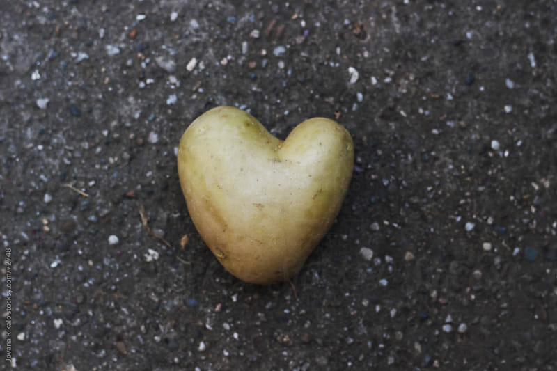 Heart potato by Jovana Rikalo for Stocksy United