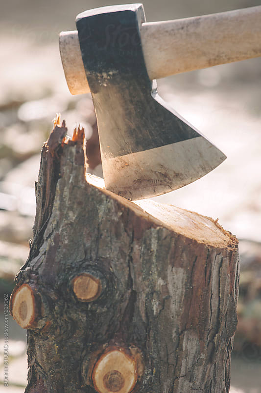 Close up of trunks and old ax on a rural background. by BONNINSTUDIO for Stocksy United