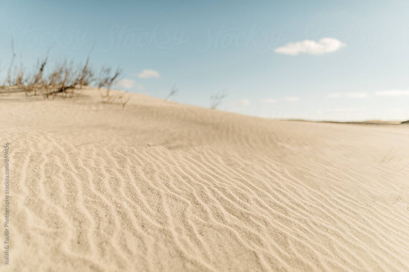Beach sand dune by Isaiah & Taylor Photography for Stocksy United