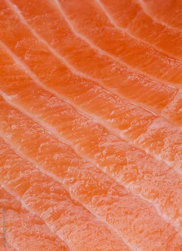 Macro study of the texture of a Salmon side by kkgas for Stocksy United