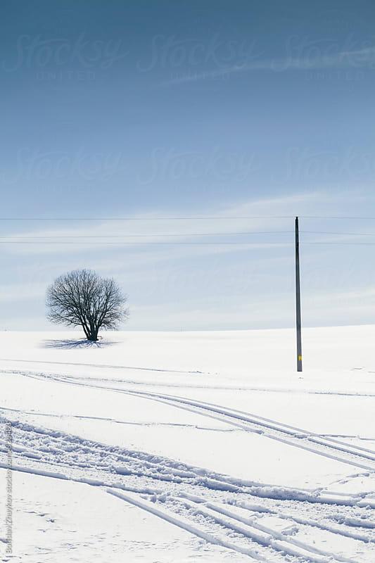 Winter scene by Borislav Zhuykov for Stocksy United