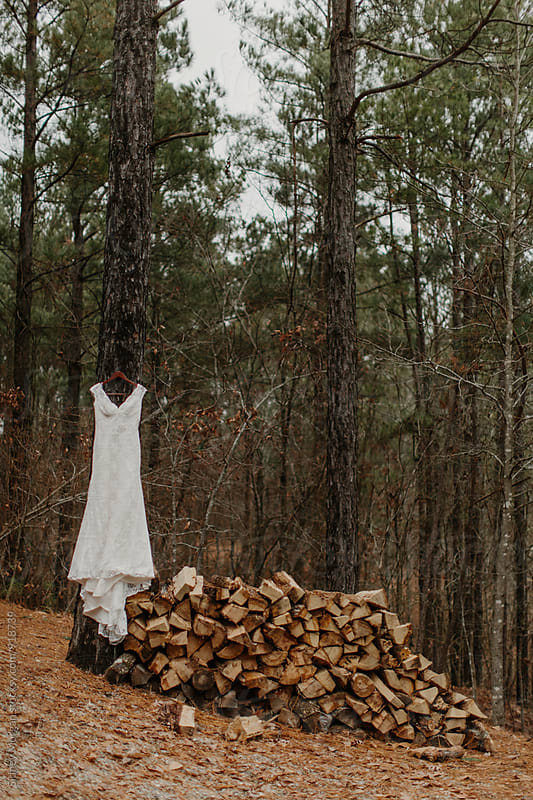 Wedding Dress hanging in Tree by Sidney Morgan for Stocksy United
