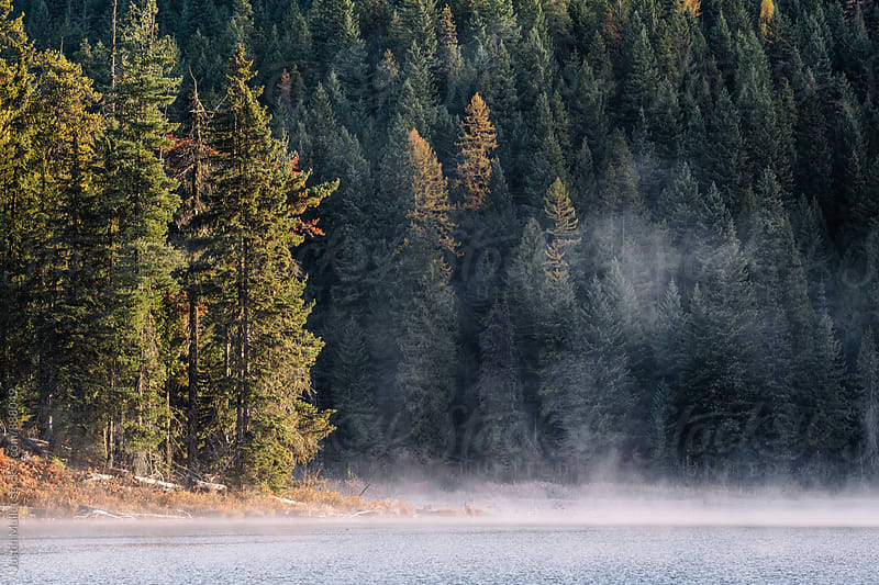 Sunny morning on a rural mountain lake by Justin Mullet for Stocksy United