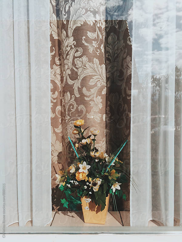 Flowers in the window by Christina Rouse for Stocksy United
