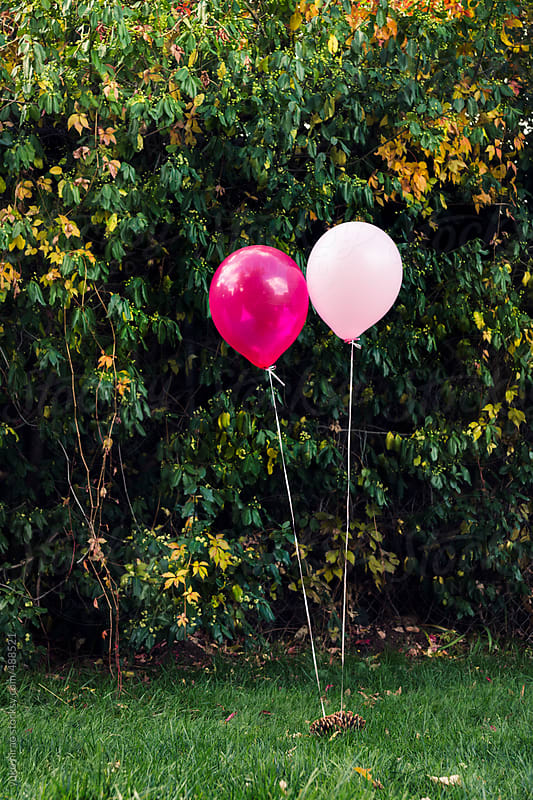 Two balloons floating in front of bush by yuko hirao for Stocksy United