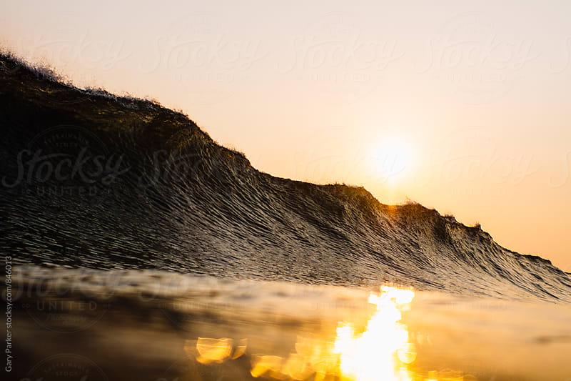 A wave about to break with the golden sun setting by Gary Parker for Stocksy United