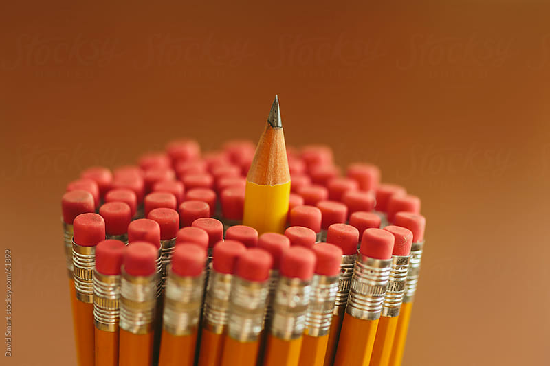 One pencil stands out from the many others in a holder by David Smart for Stocksy United
