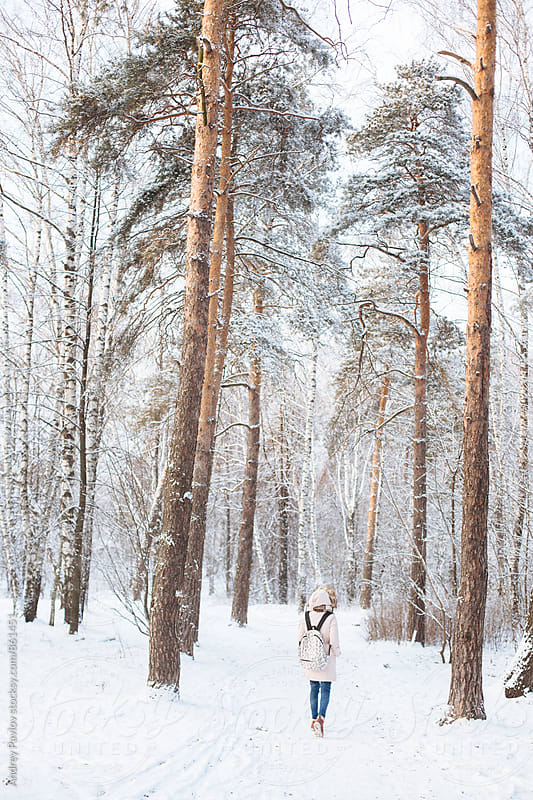 Back view of woman with backpack walking in snowy forest by Andrey Pavlov for Stocksy United