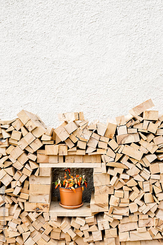 Pile of wood with hot pepper in the middle for decoration by Beatrix Boros for Stocksy United