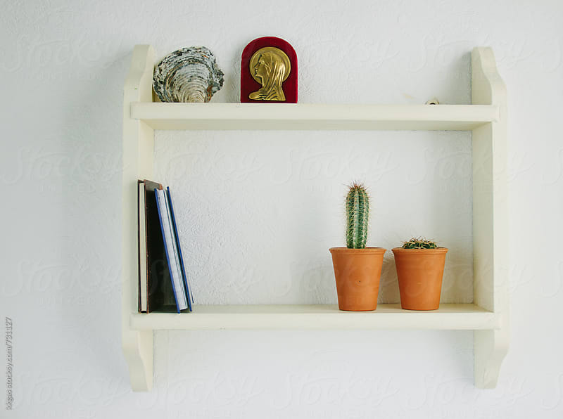 Cactus and Catholic Virgin wall plaque on a shelf by kkgas for Stocksy United
