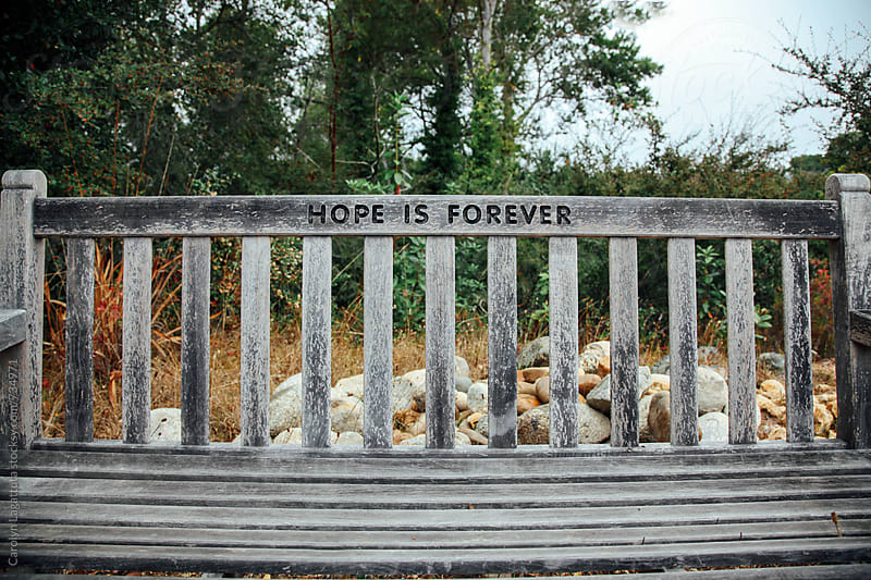 Bench in a park that has the words Hope is Forever written on it by Carolyn Lagattuta for Stocksy United