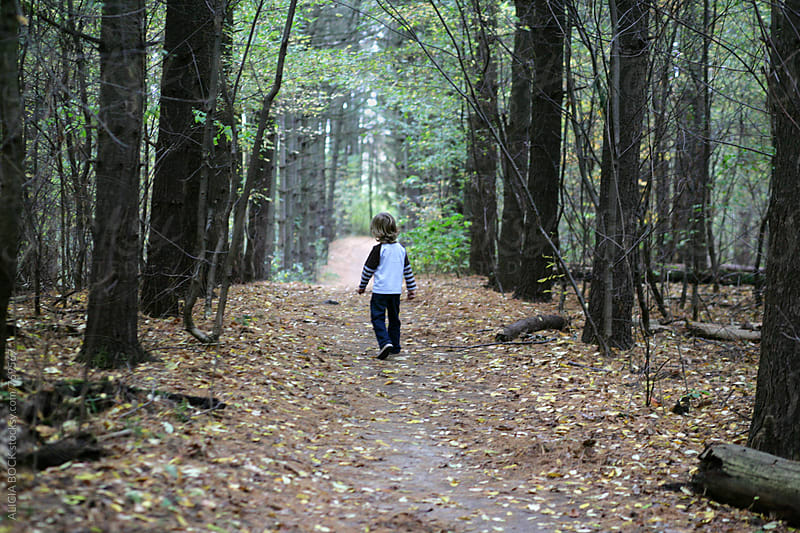 A Boy Taking A Walk Down A Path Through An Autumn Forest by ALICIA BOCK for Stocksy United