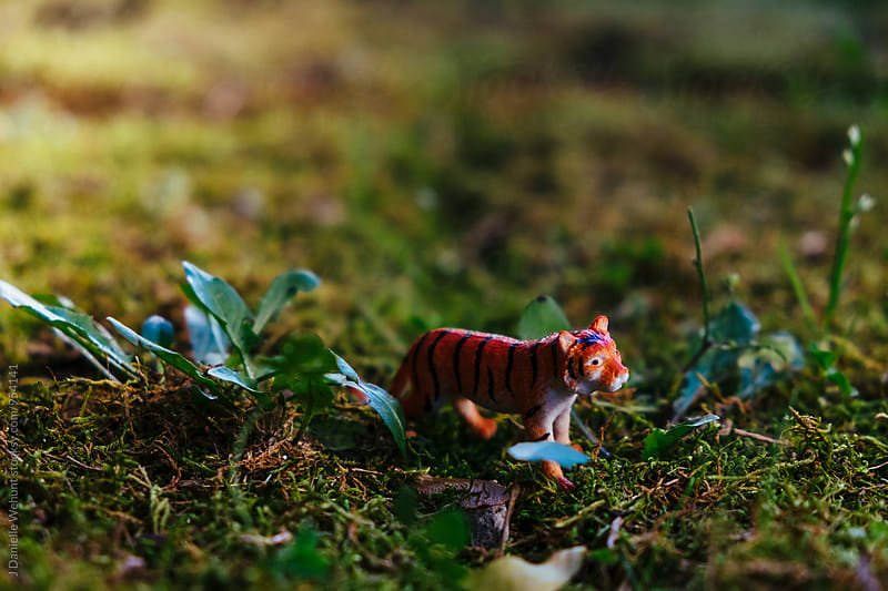 Miniature Plastic Toy Tiger in grass by J Danielle Wehunt for Stocksy United