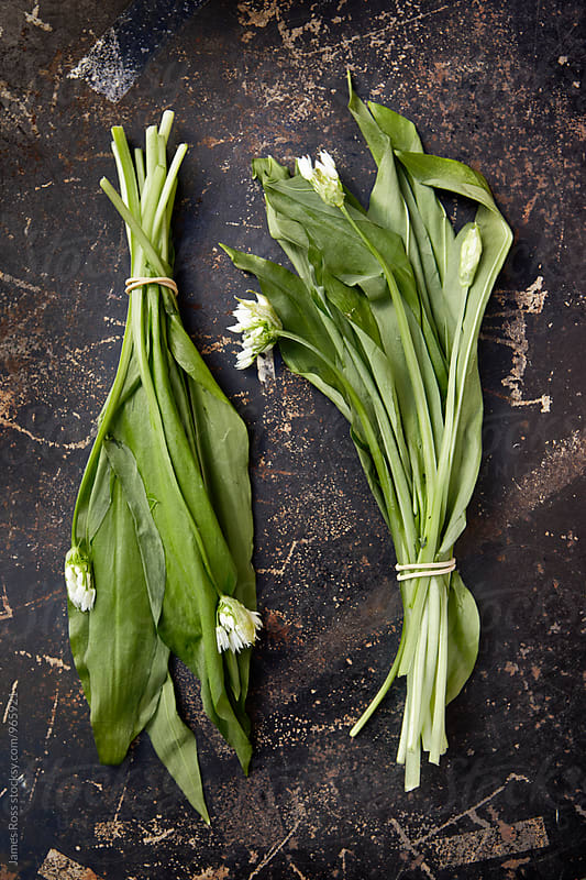 Wild garlic leaves by James Ross for Stocksy United