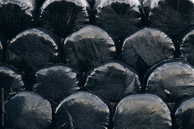 Detail of a stack of black wrapped bales on a farm. Derbyshire, UK. by Liam Grant for Stocksy United