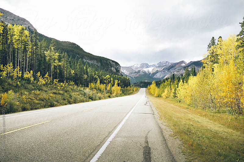 Canadias Rockies during fall by Oscar Lopez for Stocksy United