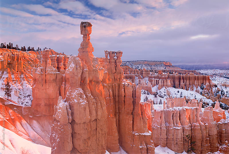 Thor's Hammer, an iconic hoodoo on the Navajo trail, a hiking trail through Bryce Amphitheater, Bryc by Gavin Hellier for Stocksy United
