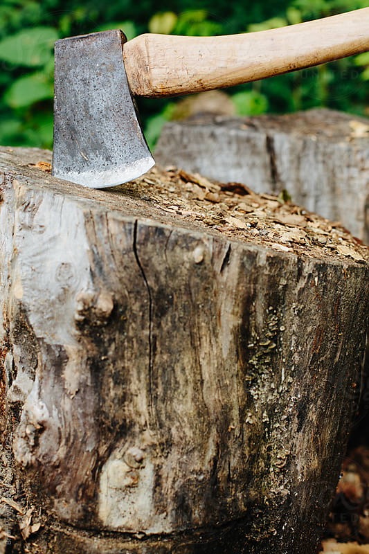 sharp axe head in a stump by Brian Powell for Stocksy United