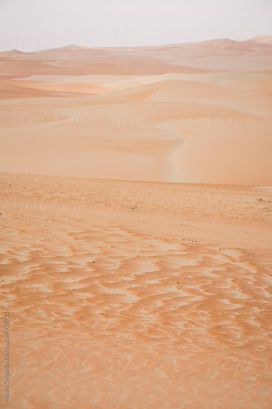 United Arab Emirates. Empty Quarter desert. by Mauro Grigollo for Stocksy United
