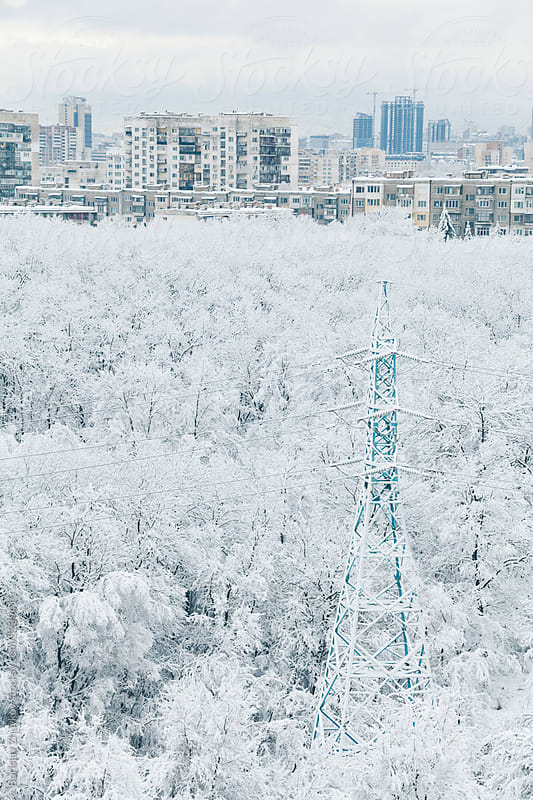 City view through snowy winter forest by Borislav Zhuykov for Stocksy United