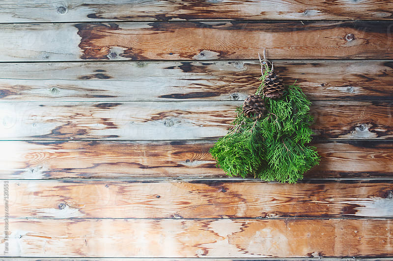 Evergreen twigs and pine cones adorn a rustic wood wall by Tana Teel for Stocksy United