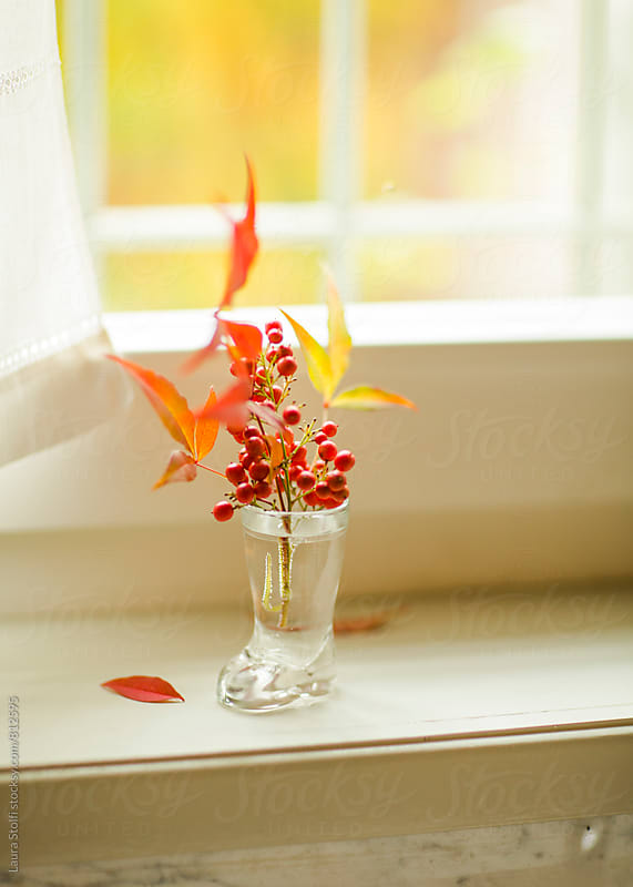 Close up of red and yellow leaves and berries in boot shaped vase on windowsill by Laura Stolfi for Stocksy United
