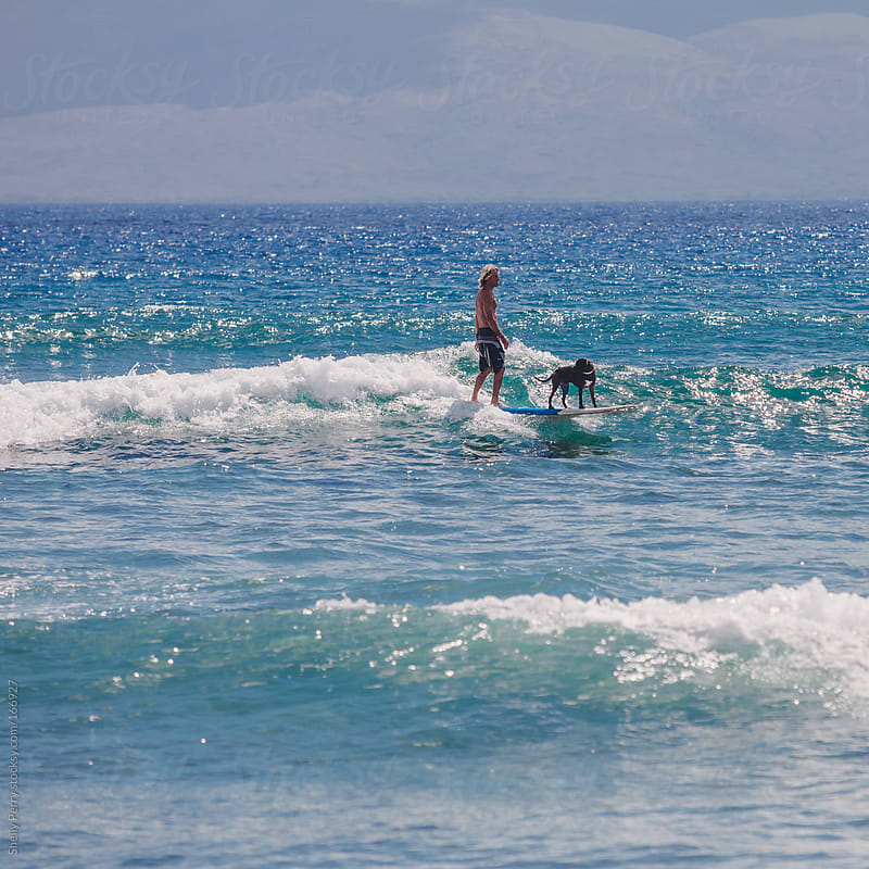 Surfer and his surfing dog hit the waves in Hawaii by Shelly Perry for Stocksy United
