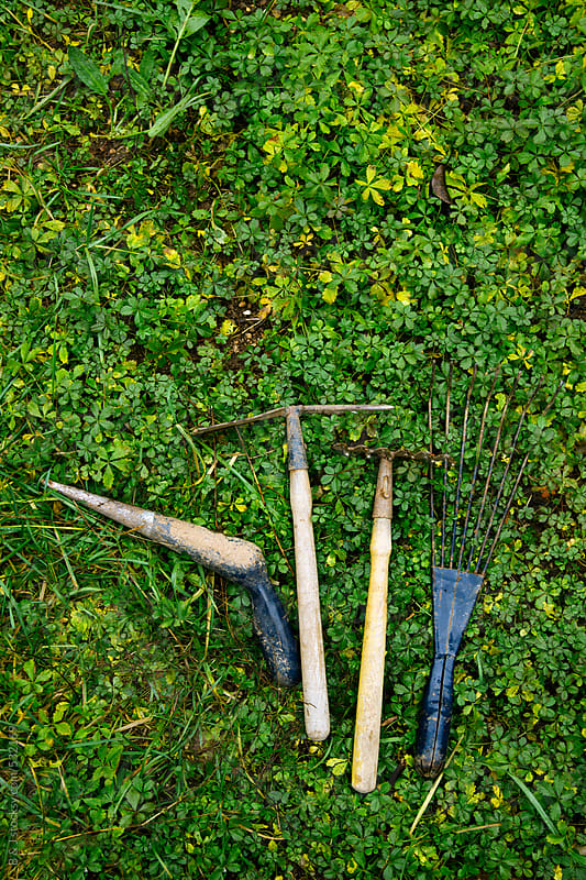 Gardening tool on the grass by B & J for Stocksy United