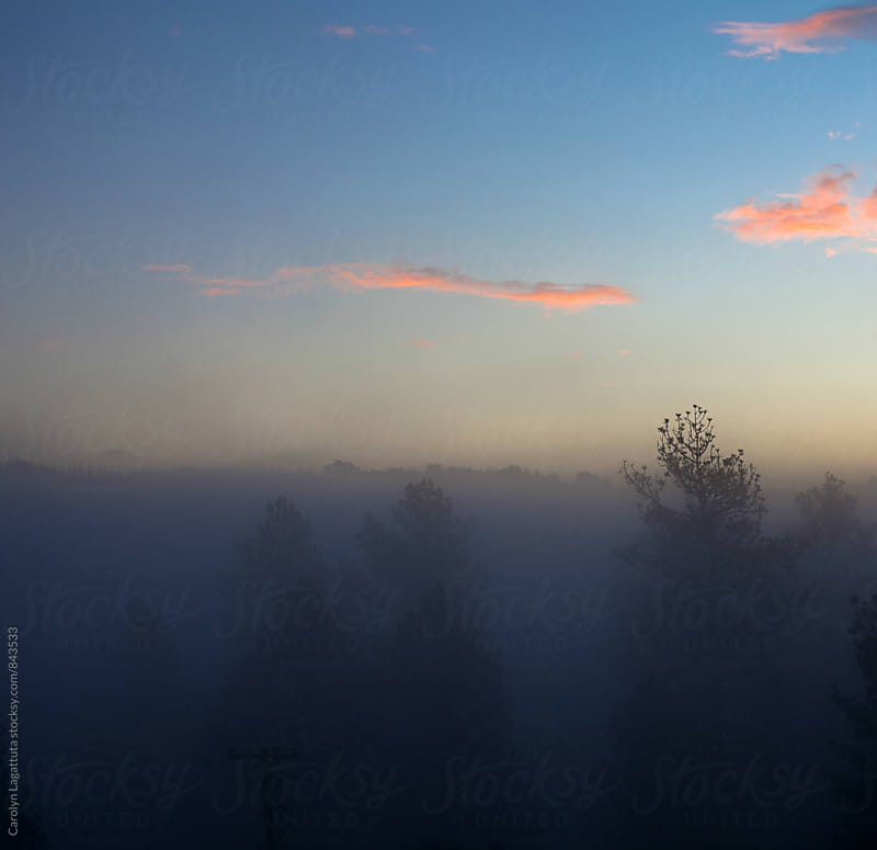 Beautiful, foggy morning sunrise by Carolyn Lagattuta for Stocksy United