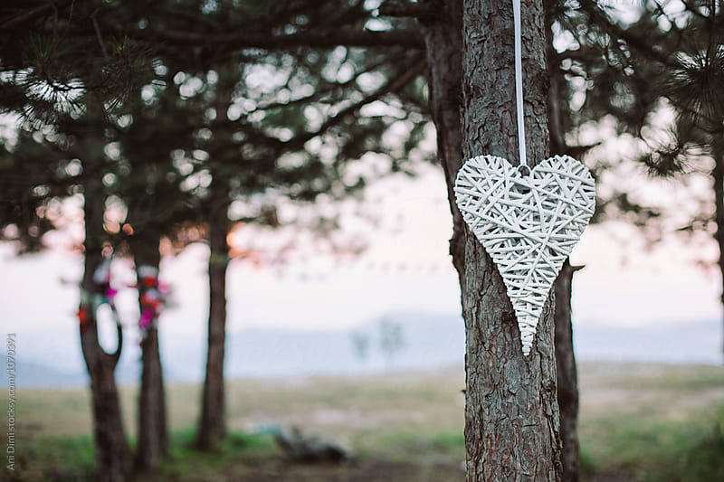 Heart shape Decoration hanging on a tree by Ani Dimi for Stocksy United