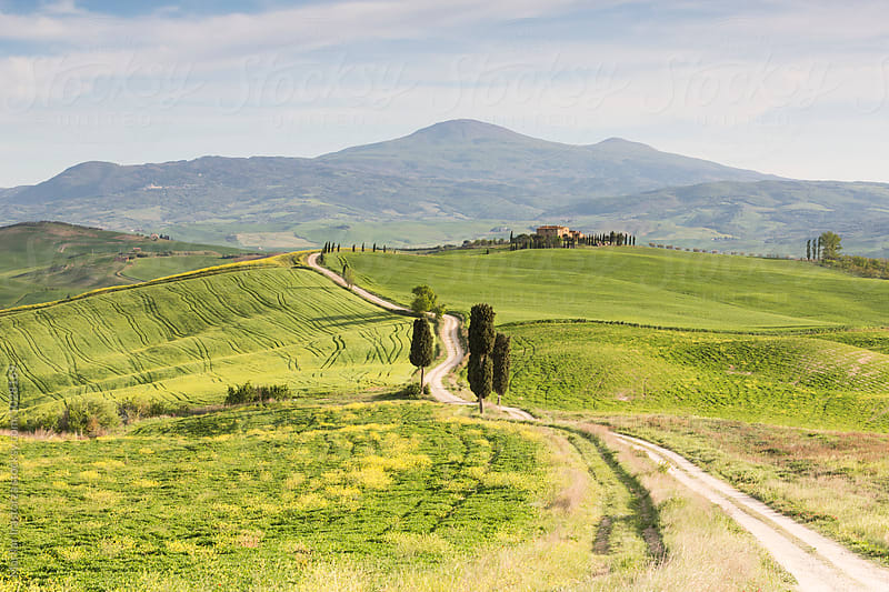 Farmhouse in a beautiful landscape of Tuscany by Marilar Irastorza for Stocksy United