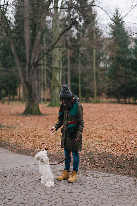 Woman training her dog in the park  by Marija Mandic for Stocksy United