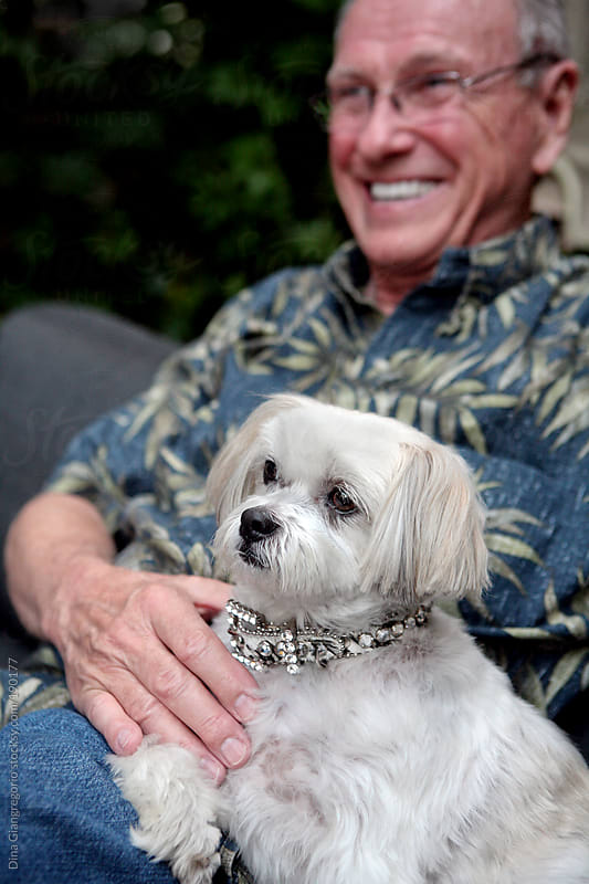 Older man holding white dog on his lap by Dina Giangregorio for Stocksy United