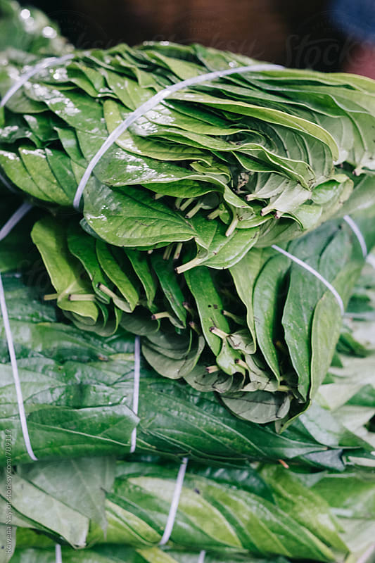 Betel Leaves at street market in Cambodia by Rowena Naylor for Stocksy United