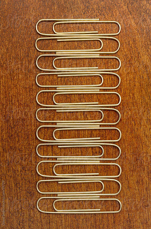 Row of paper clips on a wood desktop. by David Smart for Stocksy United