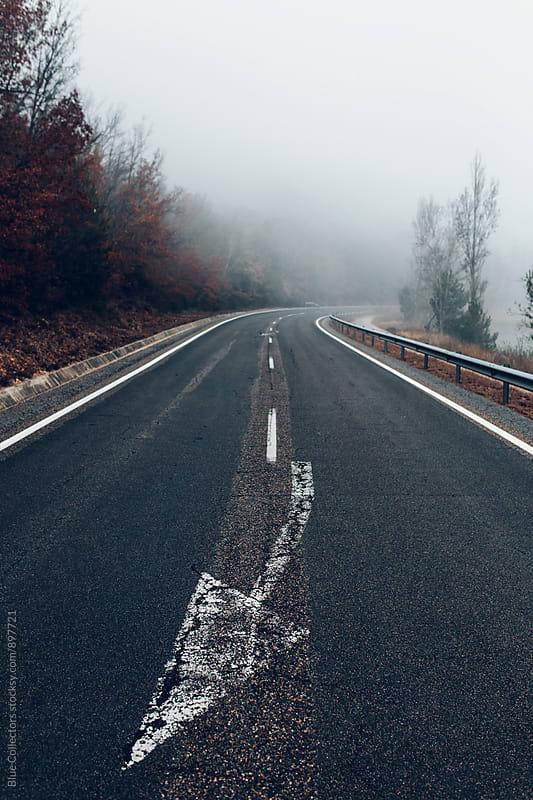 Foggy road  by Jordi Rulló for Stocksy United