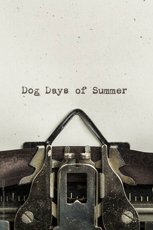 Dog Days of Summer typed on a vintage typewriter by Adam Nixon for Stocksy United