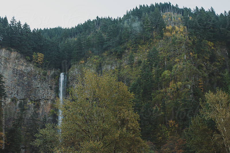 Multnomah Falls by Nicholas Roberts for Stocksy United