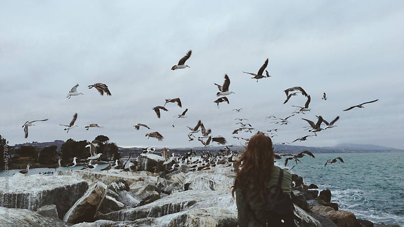 Seagulls Flying Over Rocks as a Woman Looks Observes  by Kevin Russ for Stocksy United