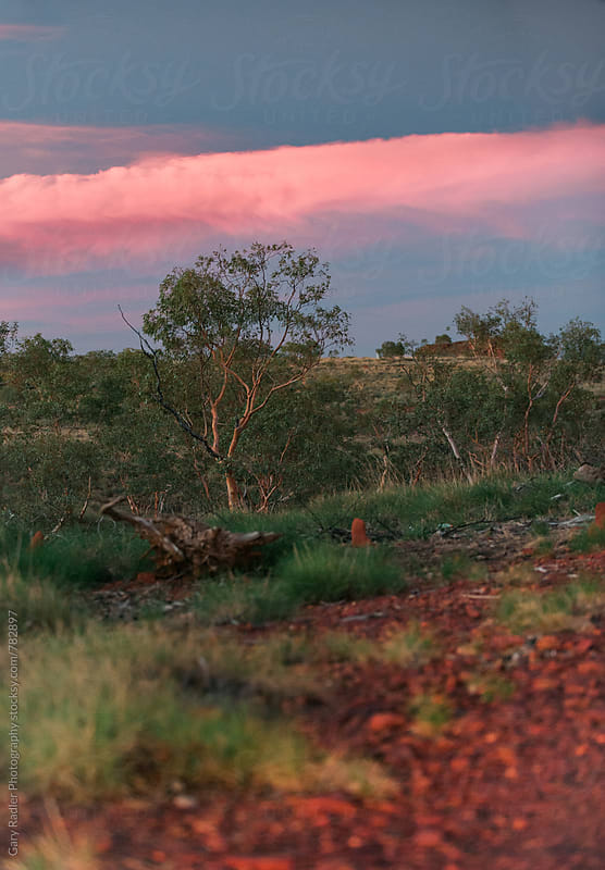 Pink Cloud over The Outback by Gary Radler Photography for Stocksy United